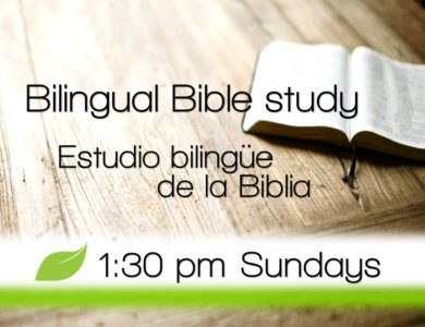 Bilingual Bible study.web